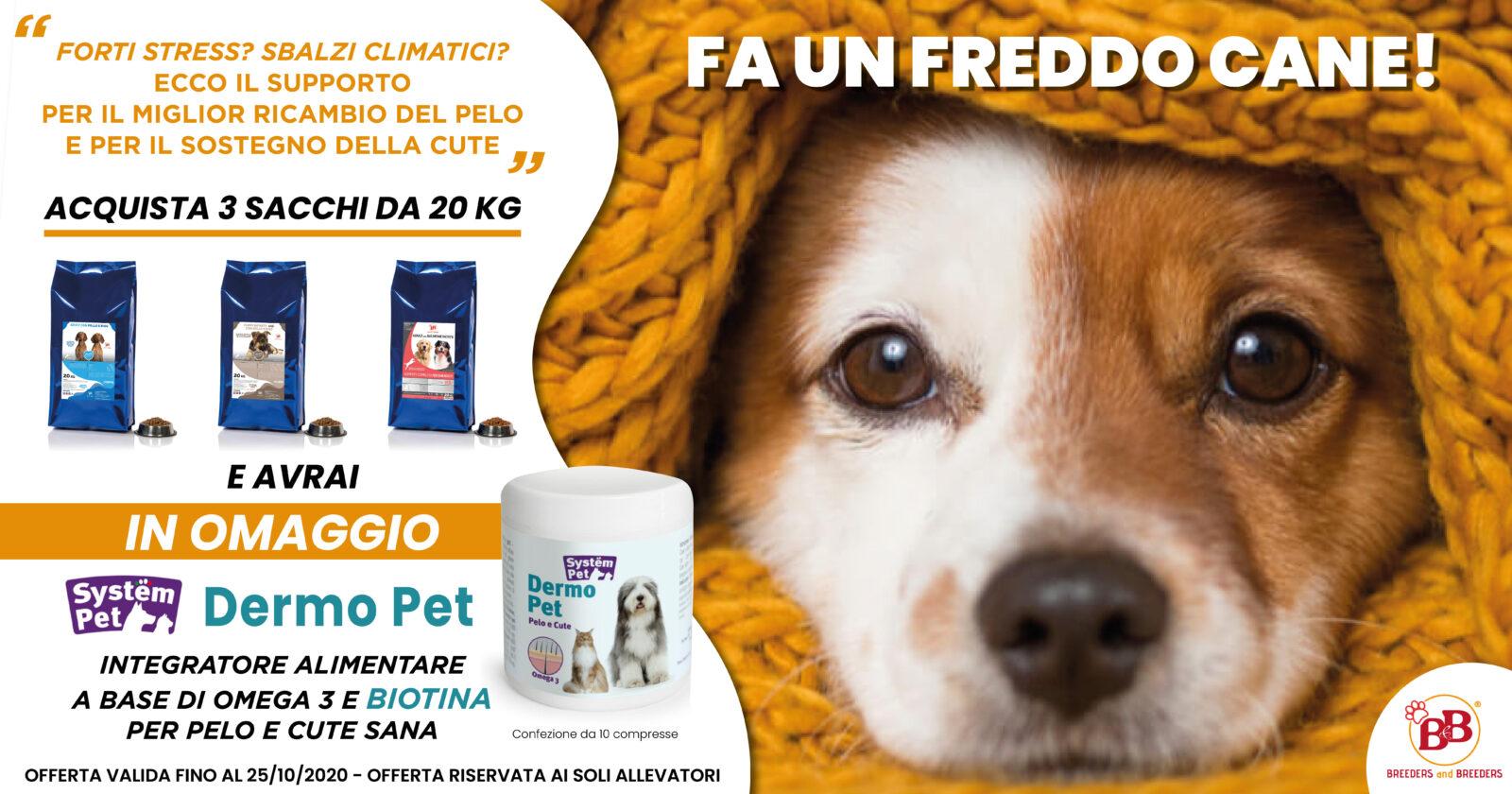 promozione crocchette cibo secco per cani online